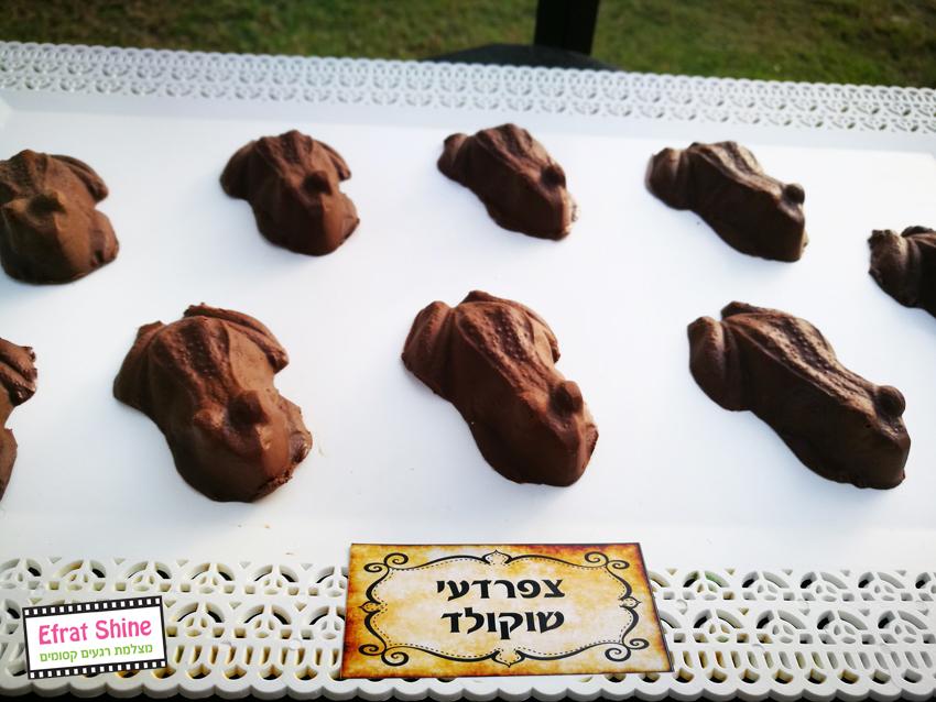 צפרדעי שוקולד יומולדת הארי פוטר -עיצוב והפקה: אפרת שיין מצלמת רגעים קסומים